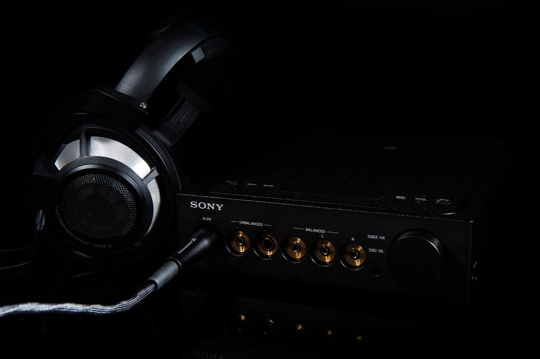HD800SとTA-ZH1ES