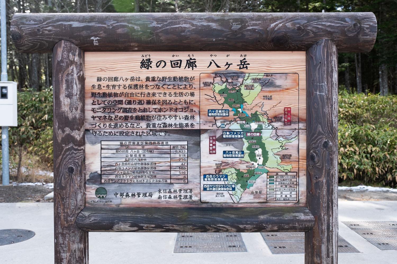 緑の回廊八ヶ岳