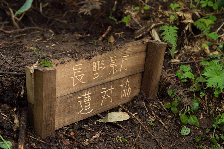 長野県庁遭対協の階段