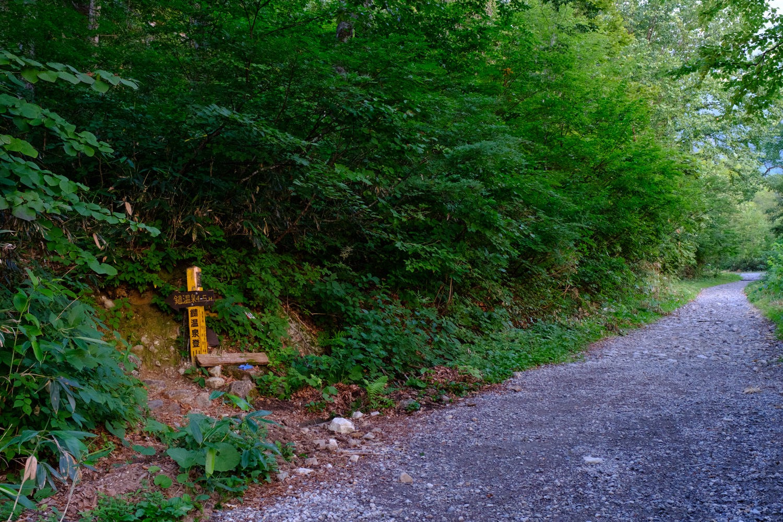 白馬鑓への登山道