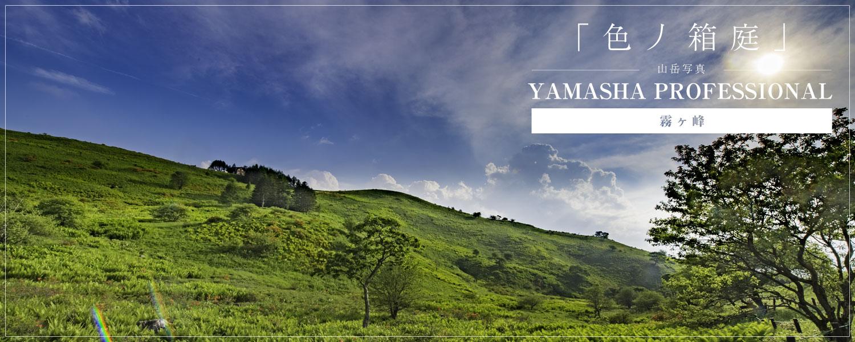Yamasha Professional 霧ヶ峰